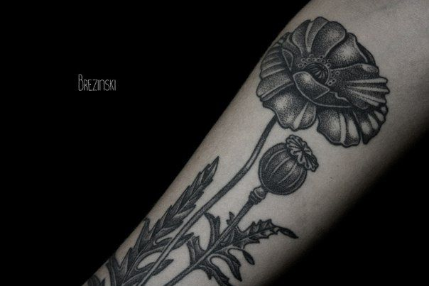Black And White Poppy Flowers Tattoo Design For Forearm By Ilya ...