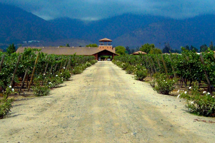 Photo of the Day – Aquitania Vineyard – Santiago, Chile    After a great time in Mendoza, just over the border from Santiago in Argentina, we certainly wanted to check-out the Chilean vineyards as well. Unfortunately due to the severe earthquake around Santiago in early 2010, we were unable to do Chilean wine justice, but did manage to get out to the Aquitania Vineyard just outside of Santiago. I remember the setting being a little strange as the winery was literally surrounded by suburban…
