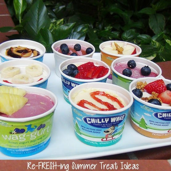 Check out our ideas to dress up Chilly Wags ice cream and Wag-gurt frozen yogurt this summer!: Idea