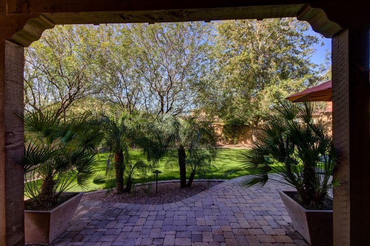 Large backyard, grass, shade, Arizona Real Estate