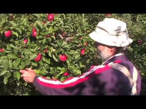 Richard Hennigar of Suprima Farms