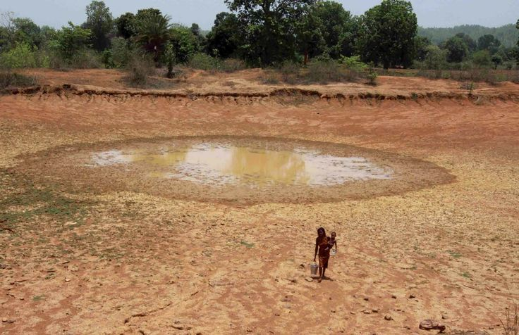water shortage solutions essay