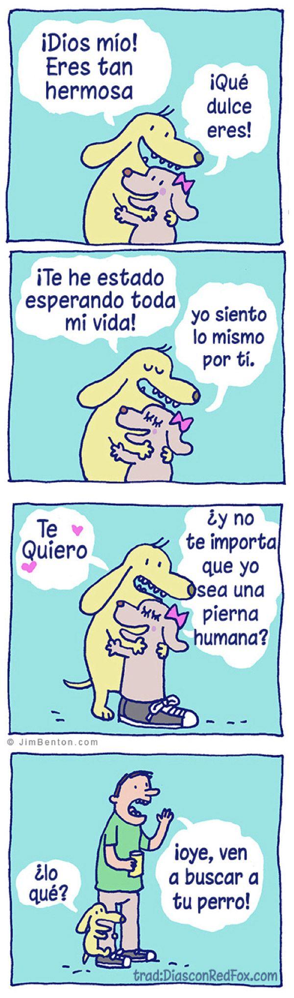 Amor perruno (humor sobre perros) / dog love (dog jokes). Mediterranean Natural