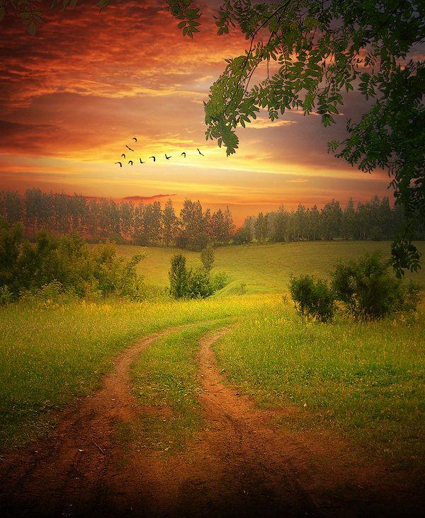 """Уходит тихо лето Одетое в траву. И остаются где-то Во сне и наяву Серебряная мушка В сетях у паука, Невыпитая кружка Парного молока, И ручеек стеклянный, И теплая земля, И над лесной поляной Жужжание шмеля.  Приходит тихо осень, Одетая в туман. Она с собой приносит Дожди изразных стран. И листьев желтый шорох, И аромат грибной, И шелест в лисьих норах, А где-то за стеной Будильник до рассвета Стрекочет на столе: """"До будущего лета, До будущего ле...""""  Тим Собакин"""