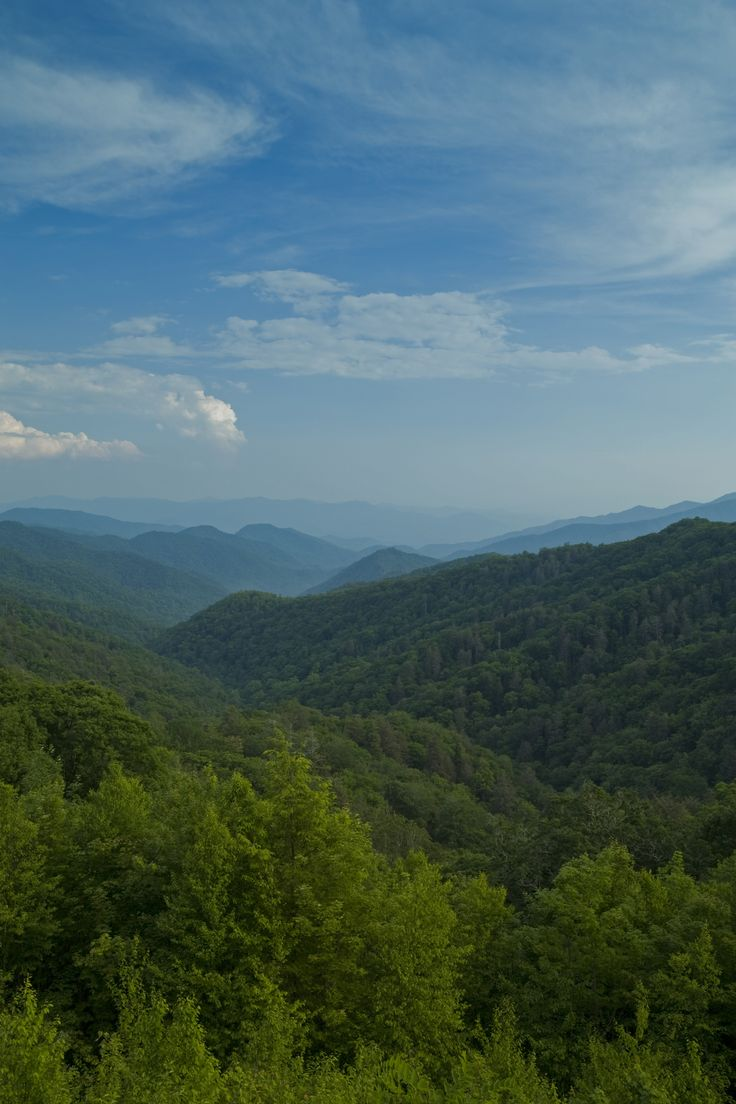 Want to learn more about the Great Smoky Mountains National Park? Click here: http://www.visitmysmokies.com/area-information/smoky-mountains/