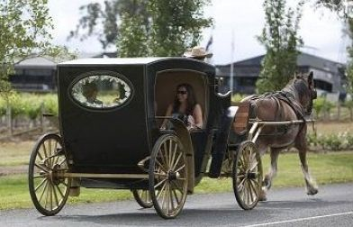 Hunter Valley Horse Riding & Carriage Tours | Hunter Valley Wine Country Tourism. Location: 917 Hermitage Road, Pokolbin NSW 2320, Australia Phone: 0431 337 367 Email: hvhorseriding@yahoo.com.au