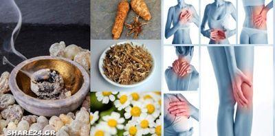 Αντικαταστήστε τα Παυσίπονα με αυτά τα 10 Βότανα χωρίς να έχετε Παρενέργειες! | The Secret Real Truth | Bloglovin'