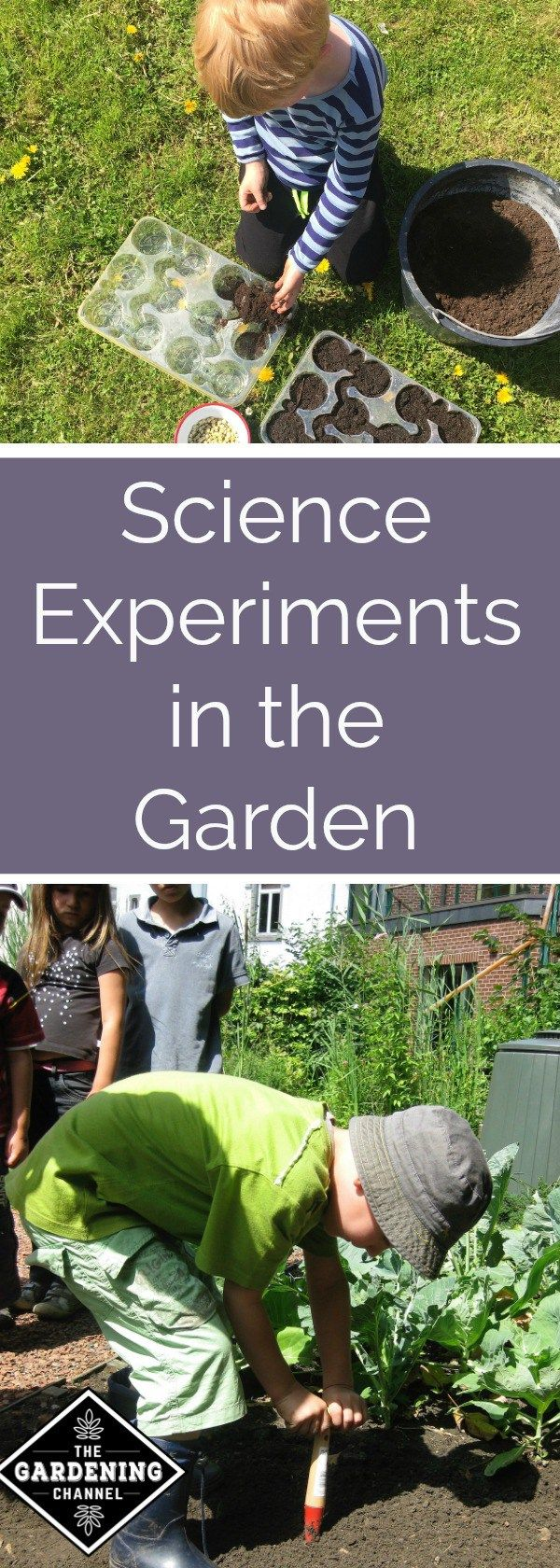 Gardening with children is the easiest way to make your own science experiment.  Try using these to get more family time outdoors.