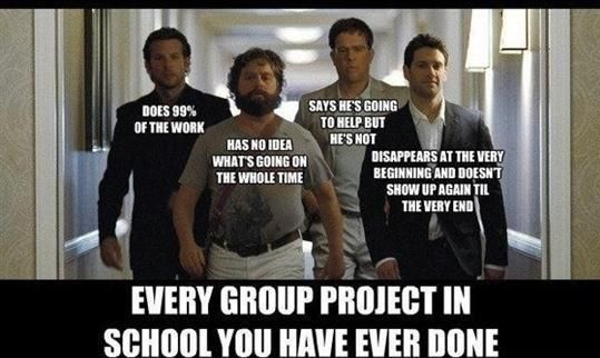 I like projects if I am working alone because when you are in a group you are the only one doing the project