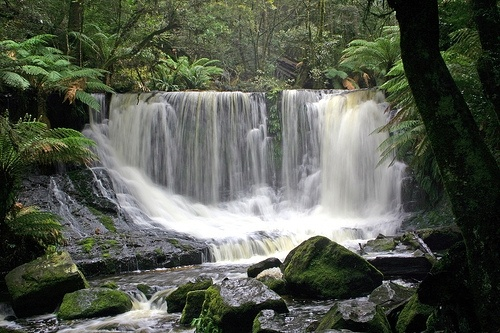 water falls tazmania | Russell Falls Tasmania Day Tour with Lunch Hobart