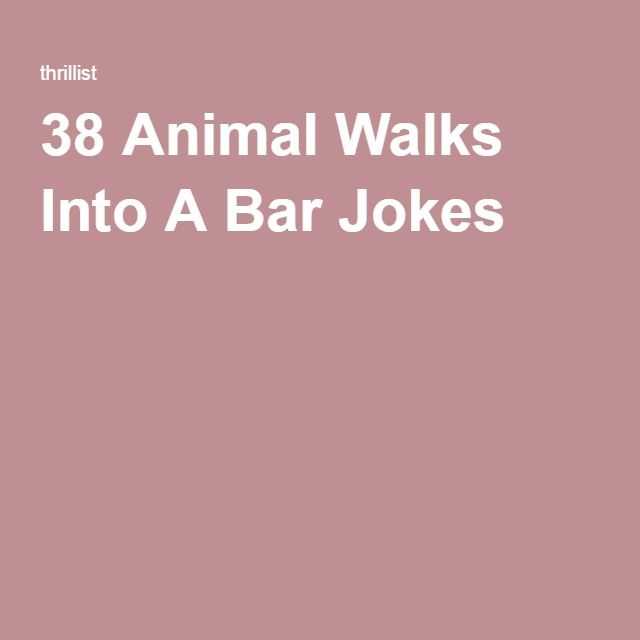 38 Animal Walks Into A Bar Jokes