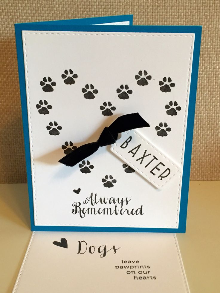 #SSSFAVE - Pawprints On Our Hearts Stamps and Bundle of Stitched Shapes Dies