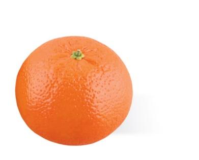 Manderijn (65 gr)  Fruit: Categorie A
