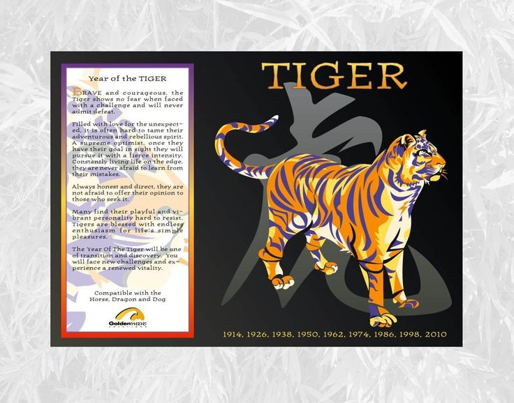 Chinese Zodiac Poster Year Of The Tiger Birth Years 1914 1926 1938 1950 1962 1974 1986 1998 2010 Pr Chinese Astrology Year Of The Tiger Chinese Zodiac Tiger