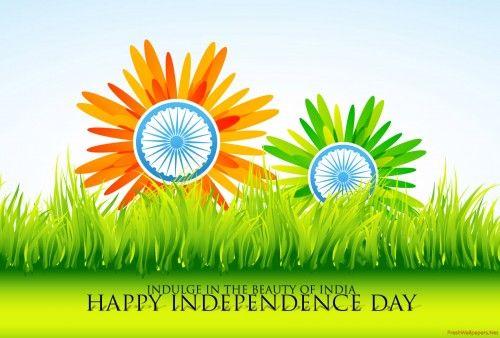 Independence Day #independence #IndependenceDay #India #HappyIndependenceDay #JaiHind #15August #Indian #Day #Happy #Freedom #VandeMataram #69thIndependenceDay #ProudToBeAnIndian #August15 #15thAugust #IncredibleIndia #NarendraModi
