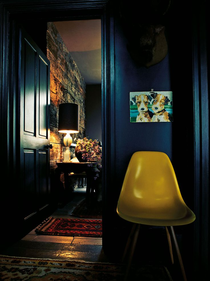 Abigail Ahern - dark blue and yellow http://cimmermann.co.uk/blog/blogs-favourites/