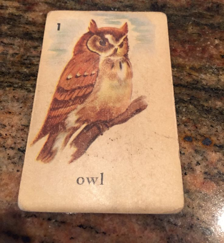Vintage Card, Owl, Owls, prints, Playing cards, Edu cards, Ed-U-Cards, Halloween, Supplies, Crafts, 1940's RARE by oodlesofrandomstuff on Etsy