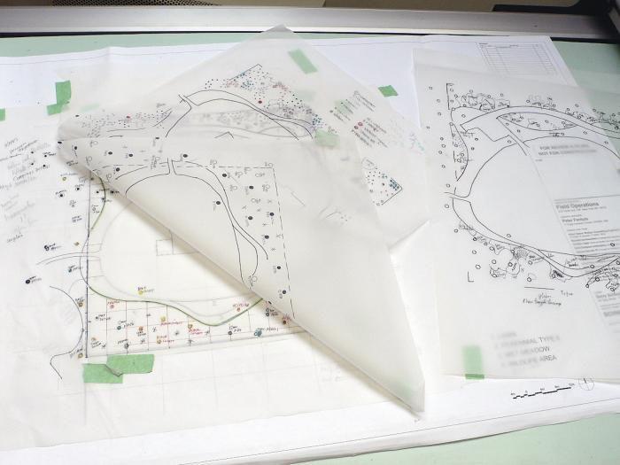 piet oudolf planting plan for year round interest in the garden via Gardenista