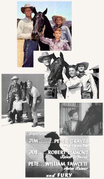 FURIA- Las aventuras de un niño y un caballo indomable. La trama gira sobre la vida de Joe (Robert Diamond), un chico huérfano que es llevado a un rancho para vivir con un hombre que recientemente ha perdido a su esposa e hijo (Peter Graves) y las aventuras que vive con su mejor amigo, el caballo Furia.