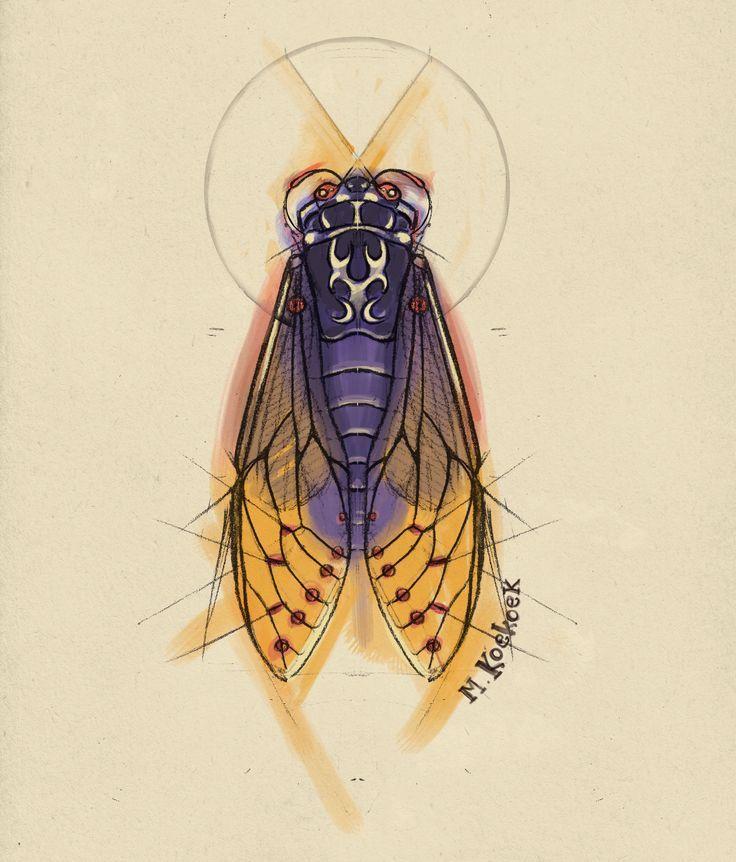 Lightning Bug Sketch Cicade bug tattoo watercolor