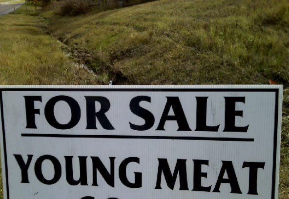 For Sale.... meat goats... Goat Meat!!