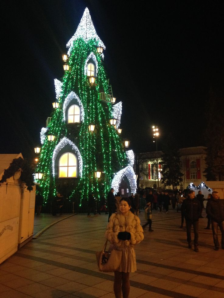 2015 city lights #christmas #christmaslights cathedral square #vilnius
