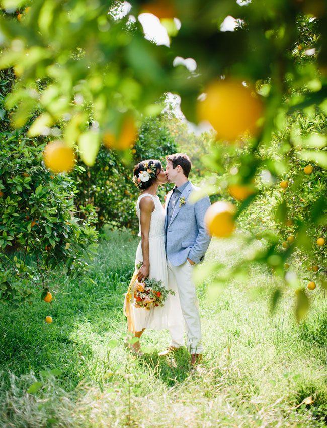 orange grove inspiration photo by Marianne Wilson Photography