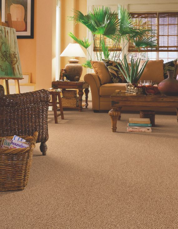 Receive off of select tigressa carpet styles for your home