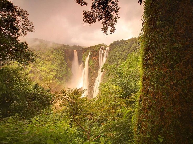 Jog Falls, India