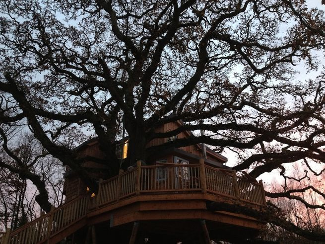 Tree houses that use corkscrew-like ground anchors provide stability without damaging a tree's root structure.