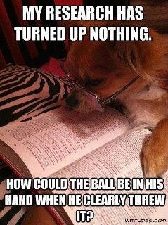 I love dog/puppy memes