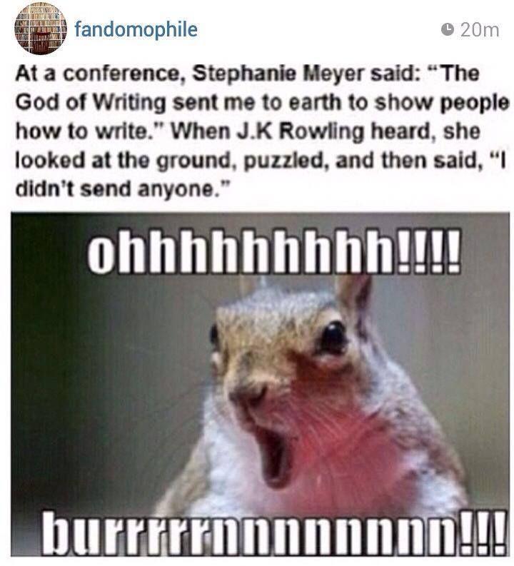 Score... Harry Potter: 1 Twilight: Zero STEPHENIE MYERS THE WORST AUTHOR EVER!!!!!!