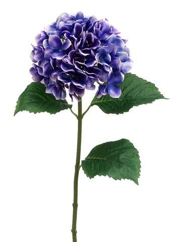 Save on silk flowers and floral supplies at Afloral.com including this beautiful silk hydrangea in a two-tone purple.