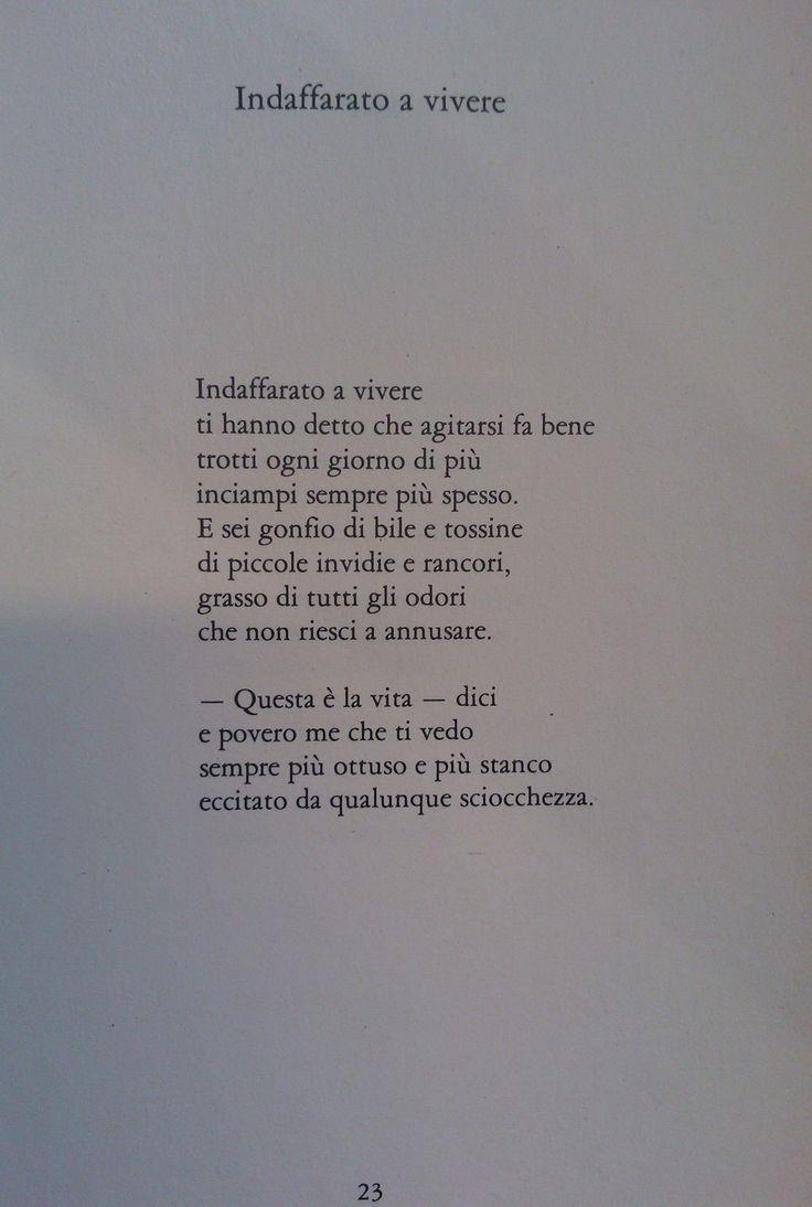 """""""Indaffarato a vivere"""" di Tito Balestra, tratta da """"Se hai una montagna di neve tienila all'ombra"""" (Garzanti, 1979). «Balestra è un poeta – afferma Alfonso Gatto – che non ha avuto fretta di stampare, è un poeta che soltanto gli amici sapevano che scrivesse poesie, epigrammi, satire e che ha dato a tutti sicurezza di sé, innanzitutto con il suo comportamento umano, con le sue scelte umane, col suo buonumore, col suo malumore, col gusto della vita che egli ci ha sempre comunicato. »"""