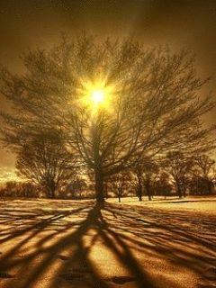Coucher de soleil 01