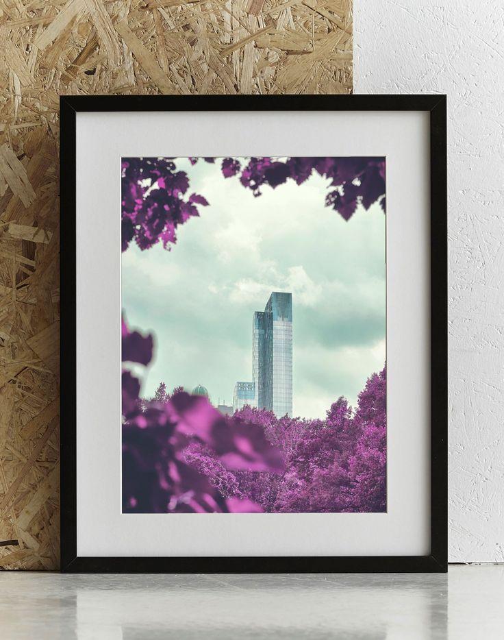 Staun P - Framed by Central Park