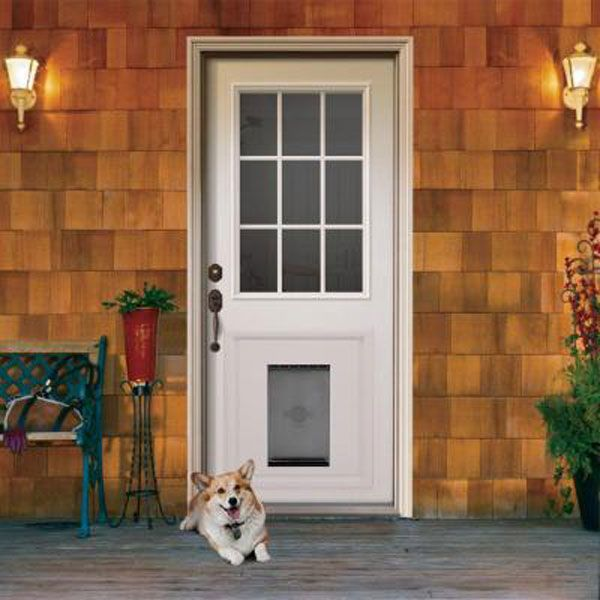 Doggie delight door by jeld wen allow your pet come and for Exterior back doors for home