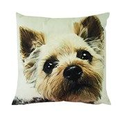 Terrier Velvet Look Cushion  Website Coming soon...