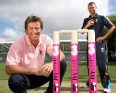 Instead of pointing to a bat sponsor - a deal that can be valued at hundreds of thousands of dollars - he gestured towards the McGrath Foundation sticker placed there that day.