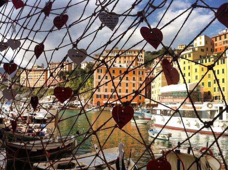 Camogli ~ Porto ~ Liguria, Foto di Mara Vezzola