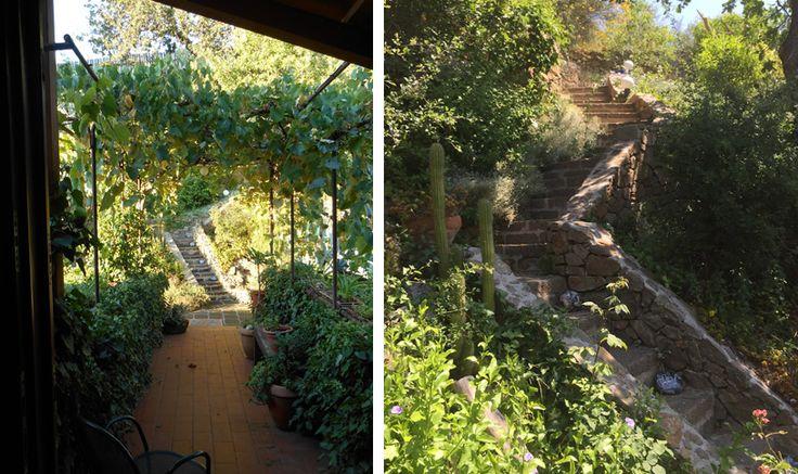 Il giardino, come la casa, opera del architetto Berardi, è terrazzato e ha molti angoli suggestivi con pergole e tantissime piante. Dal punto piu alto si gode di un panorama incredibile (in questo posto l'Architetto ha predisposto sotto terra tutte le tubature per costruire una vasca idromassaggio).