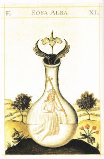 "In alchemy, Albedo is one of the 4 major stages of the magnum opus; along with nigredo, citrinitas and rubedo. It is a Latin term meaning ""whiteness."" Following the chaos or massa confusa of the nigredo stage, the alchemist undertakes a Purification in Abedo, which is literally referred to as ablutio – the washing away of impurities. In this process, subject is divided into two opposing principles to be later coagulated to form a unity of opposites or coincidentia oppositorum during Rubedo."