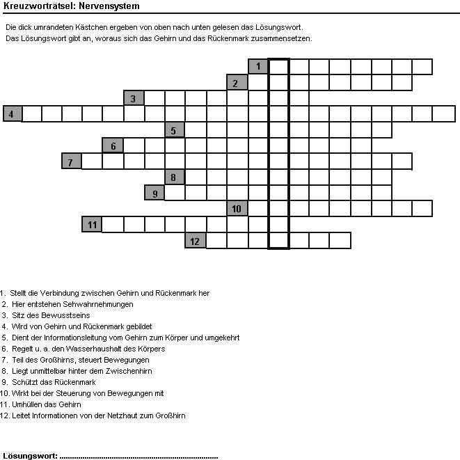 20 Arbeitsblatt Haut Worksheets Crossword Puzzle