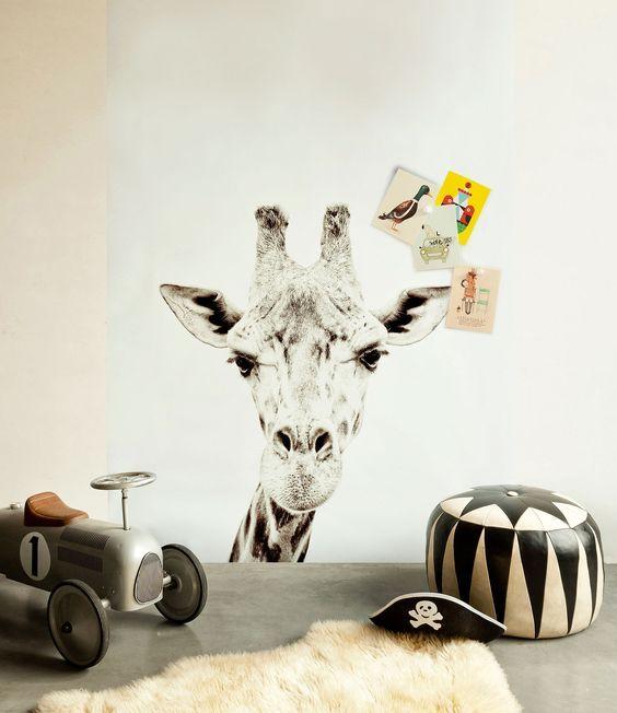 FANTASIA DI ANIMALI la carta da parati per la cameretta del tuo bambino! – Around a Chair