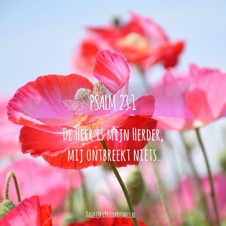 De Here is mijn herder, mij ontbreekt niets. Psalm 23:1
