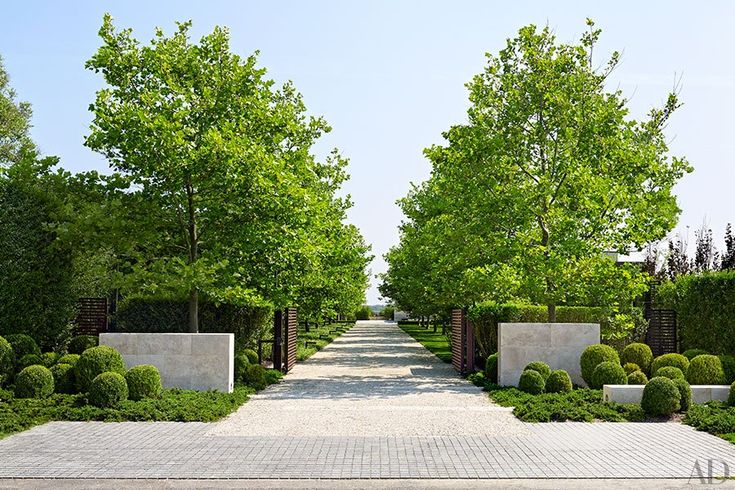 London plane trees shade the drive of a Bridgehampton, New York, residence created by the architecture, interiors, and landscape firm Sawyer|Berson and furnished by LRS Designs.