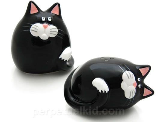Salt and Pepper Shakers! I have these and they are adorable!