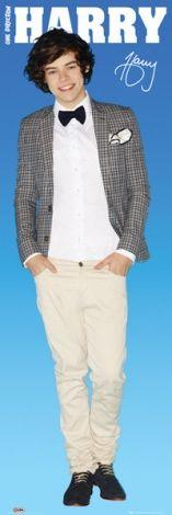 One Direction Harry - plakat - 30,5x91,5 cm  Gdzie kupić? www.eplakaty.pl