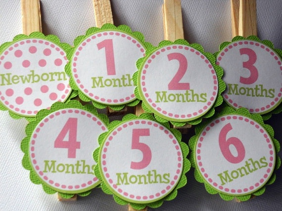 Monthly Picture Banner with labels on the clothes pins instead of the pictures..