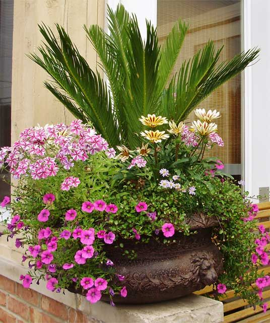 Another pretty and unique container garden idea. I love the big fern in the middle as it adds height and serves as the focal piece for the entire display.
